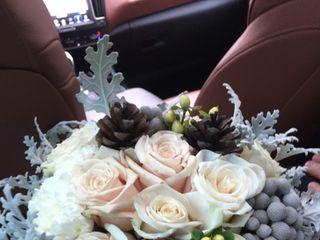 Le nozze di Sheila e Andrea  3