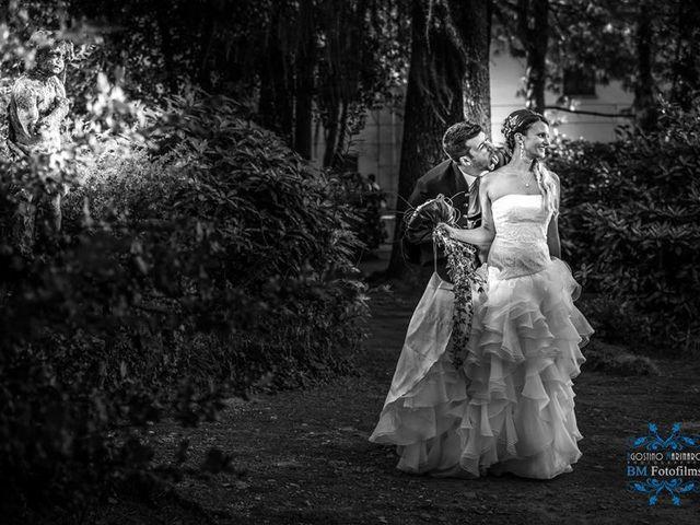 Il matrimonio di Luca e Tiziana a Senago, Milano 5