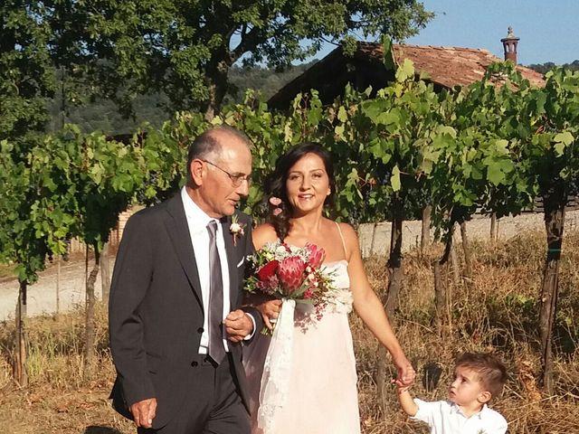Il matrimonio di Gianluca e Nicoletta a Casteggio, Pavia 14