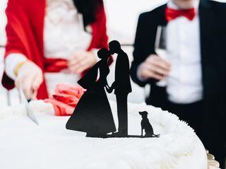 Le nozze di Francesca e Enrico 1