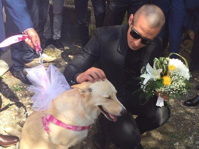Il matrimonio di Frederic e Elisa a Sesta Godano, La Spezia 9