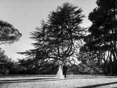 le nozze di Eleonora e Fulvio 82