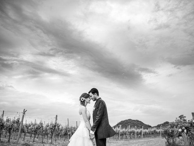 Il matrimonio di Andrea Valerio e Silvia a Due Carrare, Padova 43