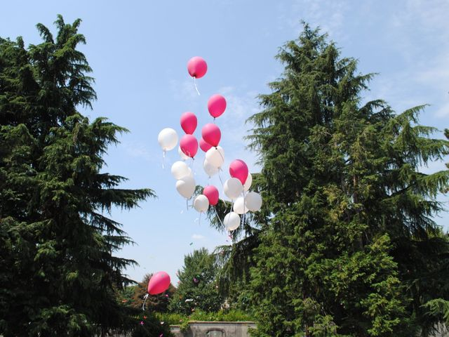 Il matrimonio di Mattia e William  a Lesmo, Monza e Brianza 19