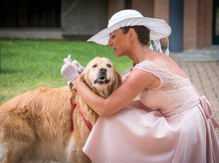 Le nozze di Daniela e Mario 1