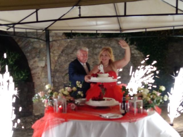 Il matrimonio di Pietro  e Laura  a Carpaneto Piacentino, Piacenza 44