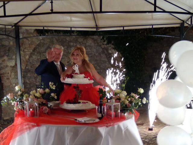 Il matrimonio di Pietro  e Laura  a Carpaneto Piacentino, Piacenza 45