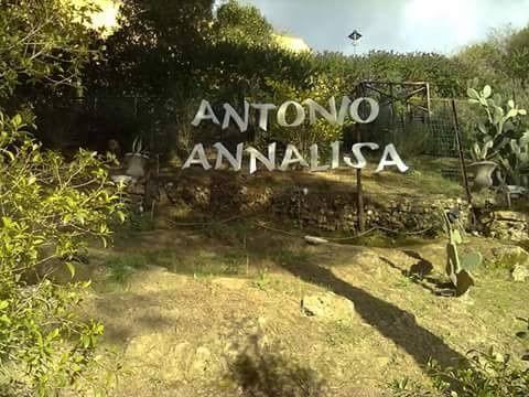 Il matrimonio di Annalisa e Antonio a Mineo, Catania 36