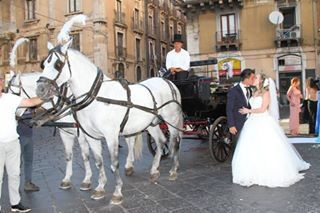 Il matrimonio di Stefano e Maria Grazia a Catania, Catania 10