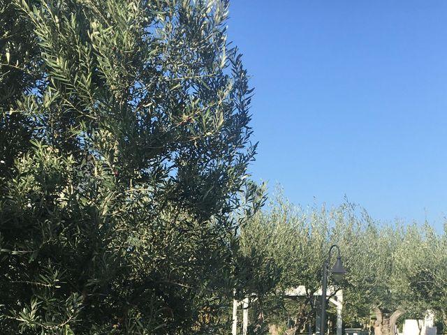 Il matrimonio di Dafne e Francesco a Savelletri, Brindisi 5
