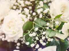 le nozze di Anita e Davide 11