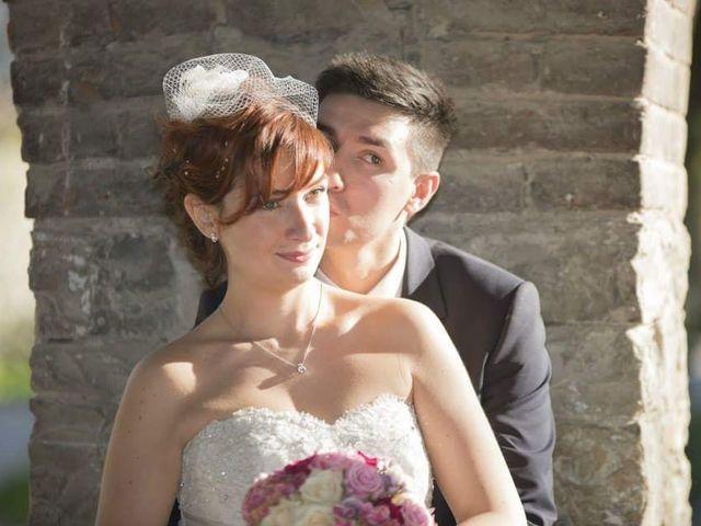 Il matrimonio di Cristiano e Annalisa a Vigolzone, Piacenza 18