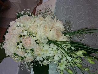 Le nozze di Ivana e Francesco Paolo 3
