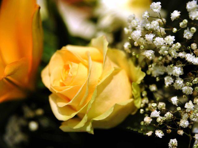 Il matrimonio di Cristina e Omar a Pieve a Nievole, Pistoia 15