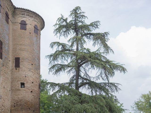 Il matrimonio di Alessandro e Paola a San Pietro in Cerro, Piacenza 13