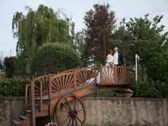 le nozze di Nunzia e Nicola 571