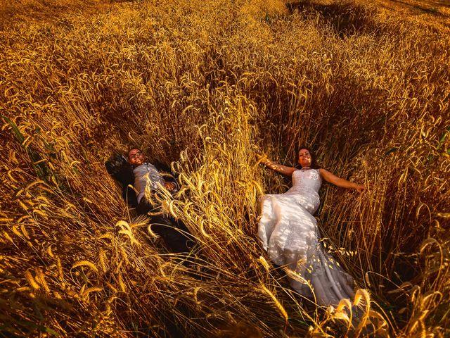 Il matrimonio di Luca e Arianna a Ceriano Laghetto, Monza e Brianza 2