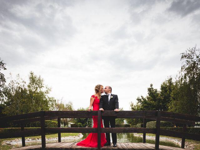 Il matrimonio di Alessio e Francesca a Concorezzo, Monza e Brianza 46
