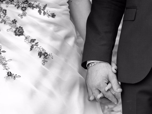 Il matrimonio di Fabio e Nicole a Ardesio, Bergamo 14