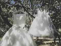 le nozze di Carlotta e Andrea 44
