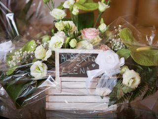 Le nozze di Alberto e Elena 1