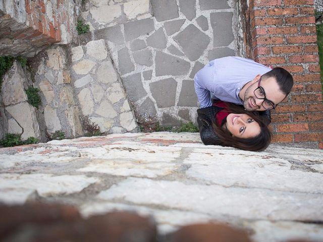 Il matrimonio di Raffaele e Giulia a Castelnuovo del Garda, Verona 4