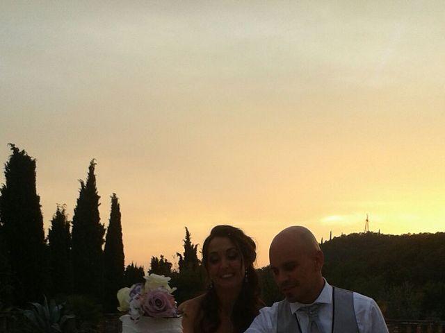 Il matrimonio di Luca e Roberta a Padenghe sul Garda, Brescia 11
