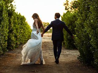 Le nozze di Costanza e Stefano