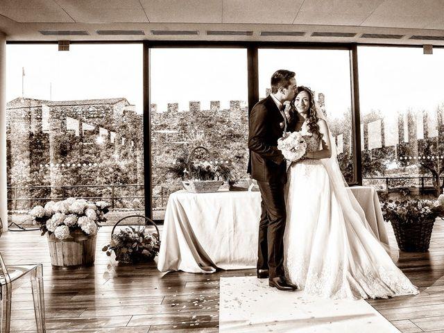 Il matrimonio di Michele e Valentina a Lonato del Garda, Brescia 51