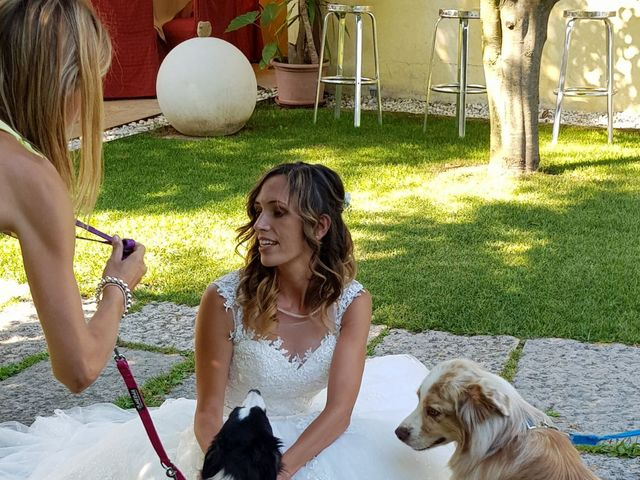 Il matrimonio di Mattia Momesso e Serena Reggiani a Ormelle, Treviso 20