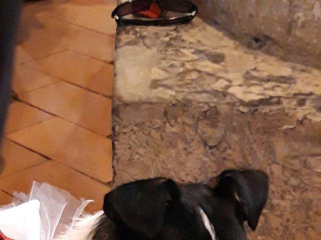 Il matrimonio di Francesco e Serena a Genova, Genova 3