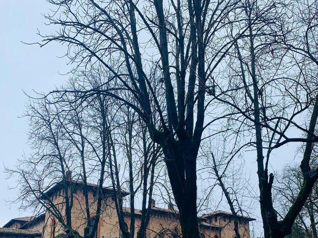 Il matrimonio di Fabio e Francesca a Cervesina, Pavia 3