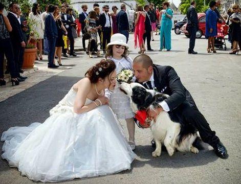 Il matrimonio di Mara e Mino a Alberobello, Bari 44