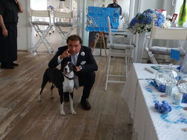 Il matrimonio di Dario e Francesca a Piombino, Livorno 31