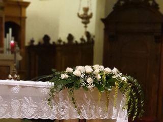 Le nozze di Carlotta e Alessio  1