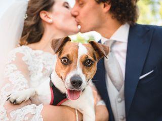 Le nozze di Carolina e Tobia