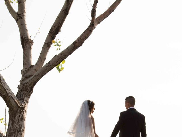 Il matrimonio di Gabriel e Simona  a Belvedere  Marittimo, Cosenza 67