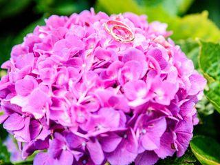 Le nozze di Elisa e Patrick 3