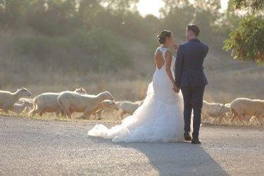 Il matrimonio di Dario e Romina  a Pergusa, Enna 8