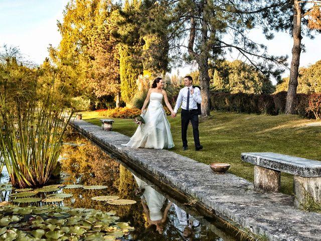 Il matrimonio di Ivan e Elisa a Castelnuovo del Garda, Verona 39