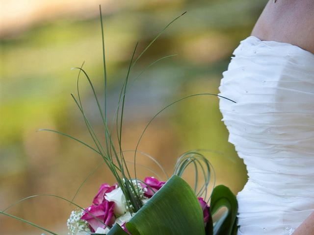 Il matrimonio di Ivan e Elisa a Castelnuovo del Garda, Verona 43