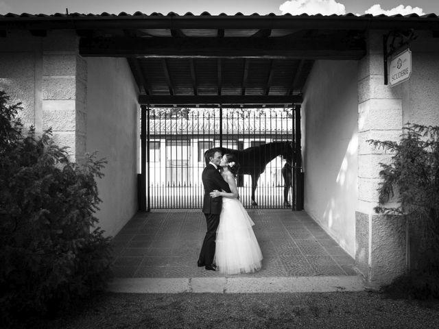 Il matrimonio di Dario e Mariacristina a Cinisello Balsamo, Milano 33