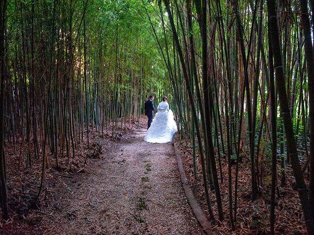 Il matrimonio di David e Martina a San Severino Marche, Macerata 29