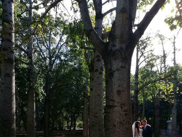 Il matrimonio di Cosimo e Sara a Palermo, Palermo 21
