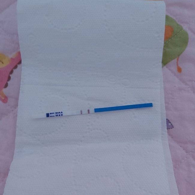 Aiuto ma stavolta aiuto. Test + / tiroide 1