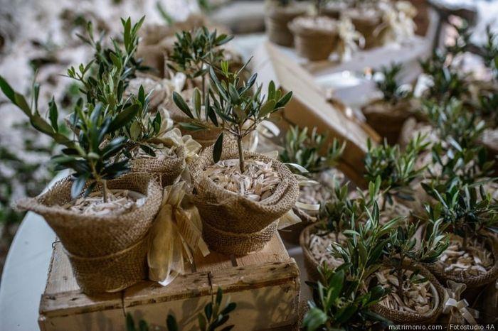 Bomboniere da piantare: promosse o bocciate? 1