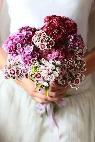 Bouquet del giorno - 3