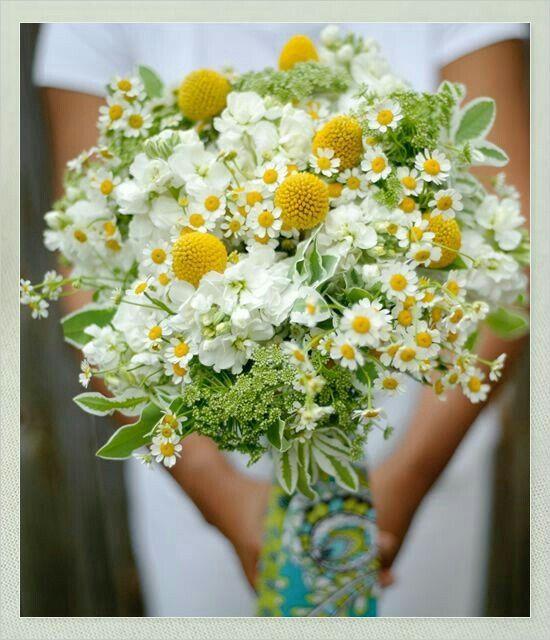 Bouquet Sposa Fiori Campo.Bouquet Fiori Di Campo Organizzazione Matrimonio Forum