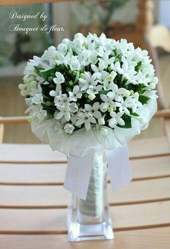 Bouvardia Bouquet Sposa.Bouquet Di Bouvardia Organizzazione Matrimonio Forum