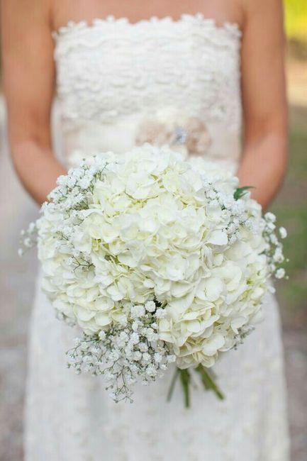 Bouquet di ortensie organizzazione matrimonio forum for Ortensie bianche